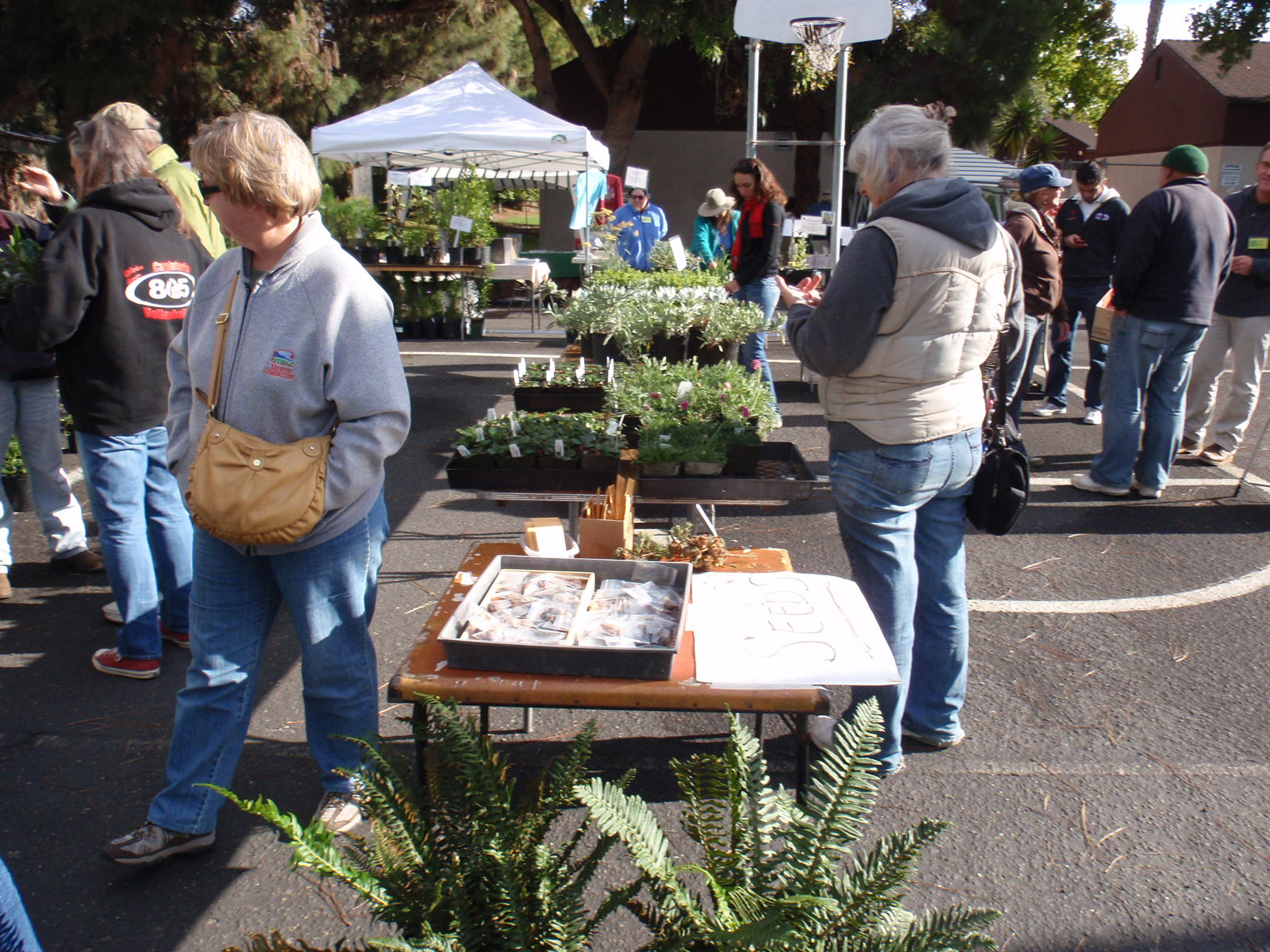 CNPS-SLO Annual Native Plant Sale50