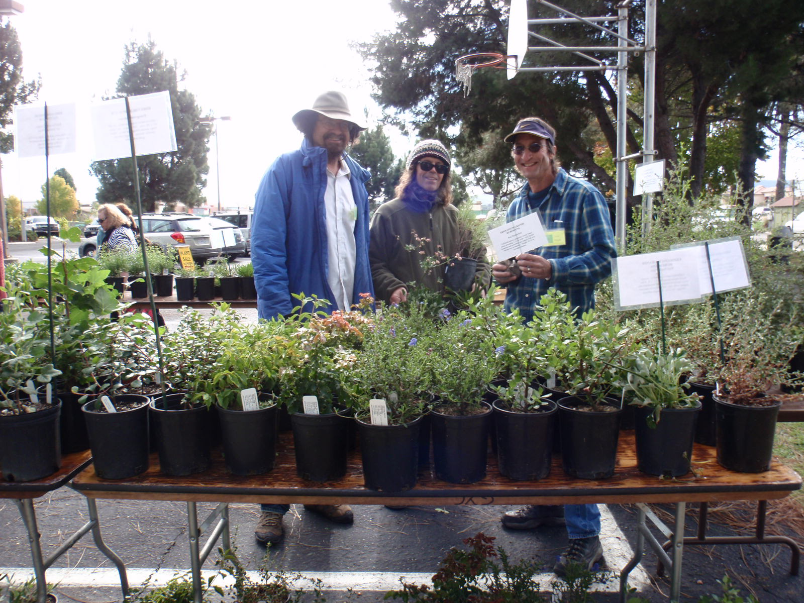 Planning for the Plant Sale