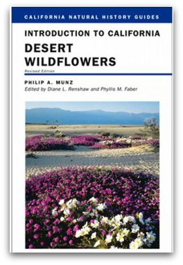 desertwildflowers