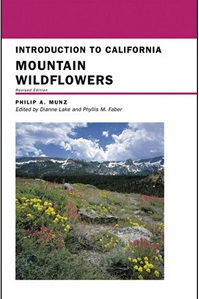 mountain wildflowers cover