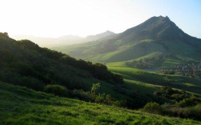 CNPS Conservation Symposium and Field Trips