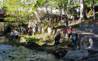Restoring Mission Creek