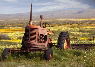 Carrizo Plain Tractor Richard Pradenas