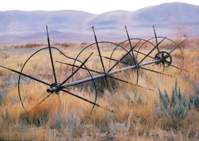 Carrizo Plain Grassland Sprinkler Richard Pradenas
