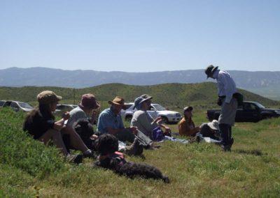 CNPS field trip, Elkhorn Rd., Carrizo Plain
