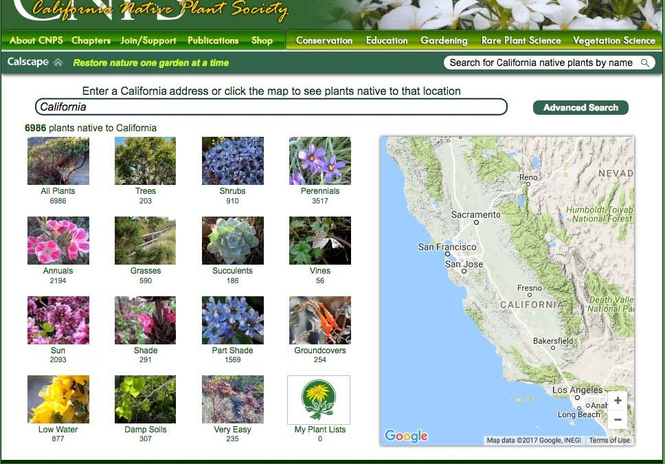Californians Restore Nature in Their Neighborhoods and Gardens with Calscape.org