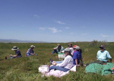 lunch site CNPS field trip Carrizo Plain