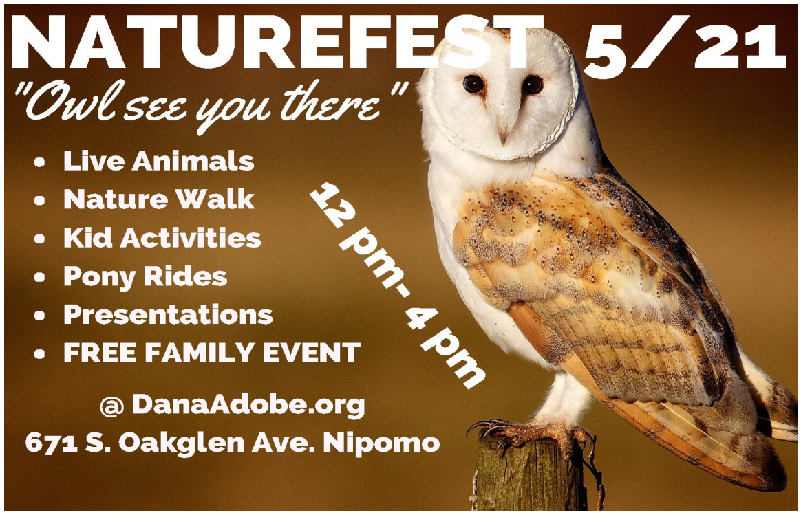 DANA Adobe Naturefest flyer