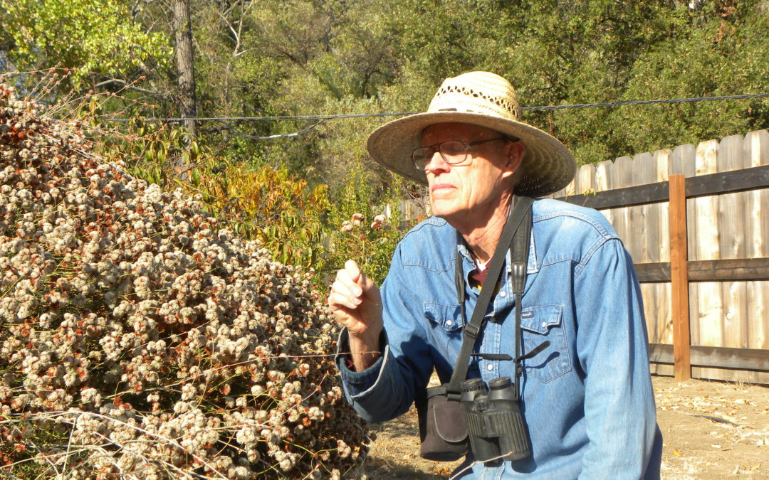 Chapter Meeting: Carrizo Ecological Reserves, George Butterworth