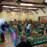 Cambria Wildflower Show