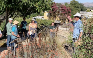 Landscaping with California Native Plants Workshop