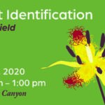 Plant ID workshop graphic